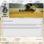 Strony internetowe wordpress realizacje e-gm